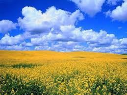 Ucrania en colores de bandera ucranianana