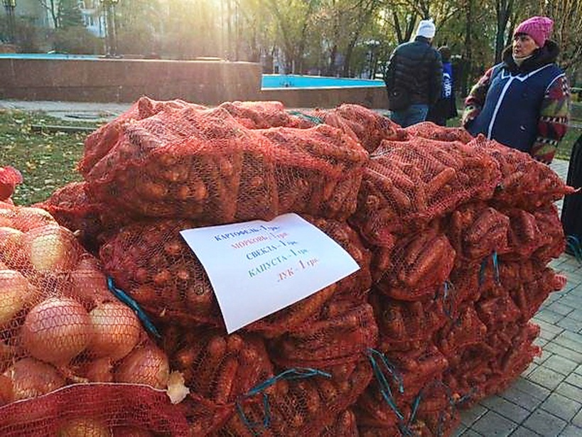 Zanahorias por voto