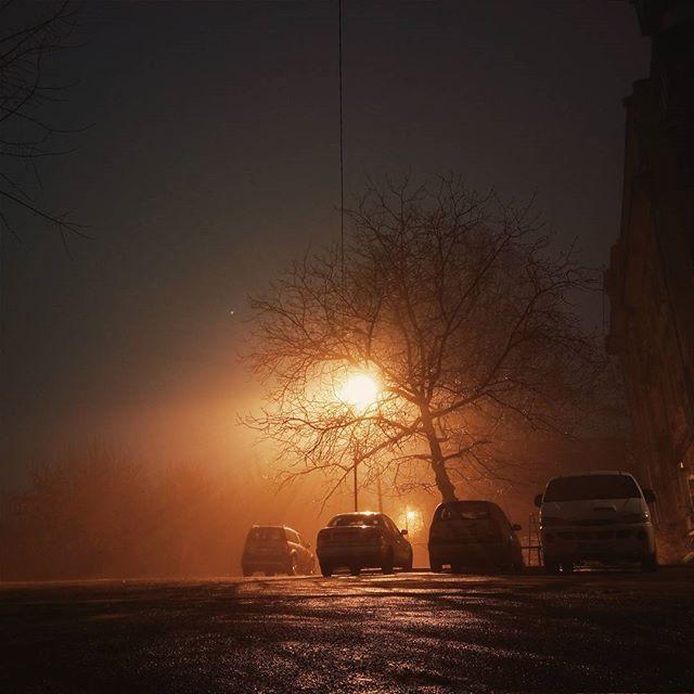 La noche de niebla