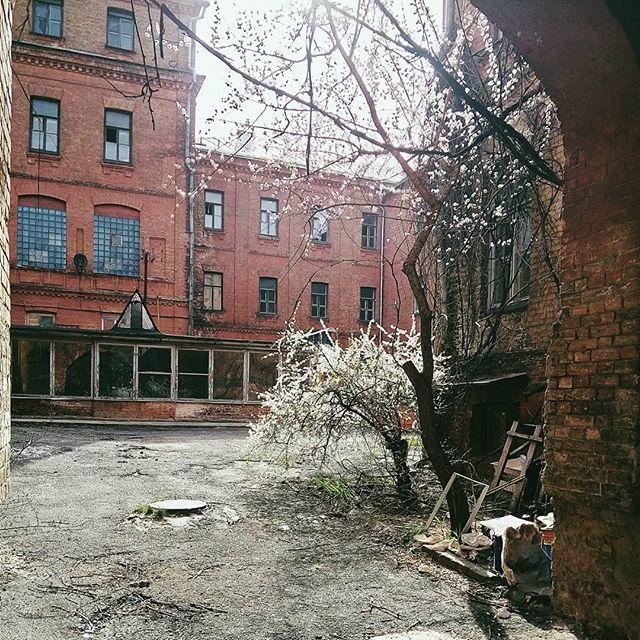Un patio de Kiev
