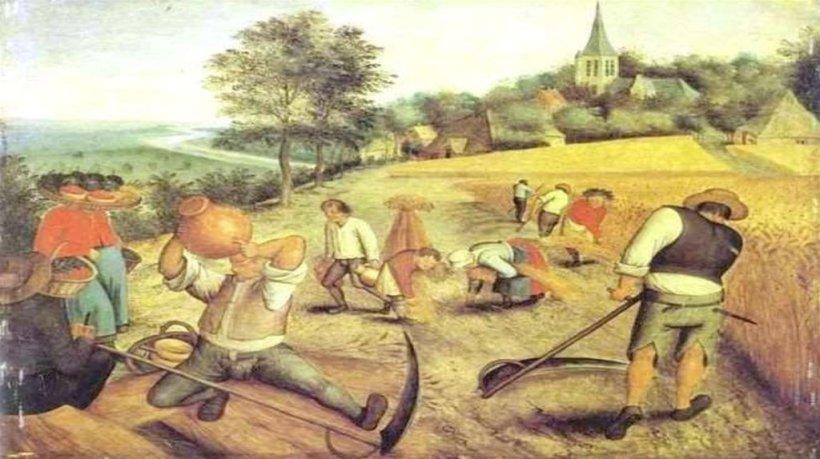 Resultado de imagen para origen agricultura